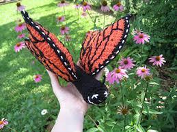 ravelry monarch butterfly crochet amigurumi pattern by celeste frocke