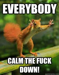 Calm The Fuck Down Meme - everybody calm the fuck down panic squirrel quickmeme