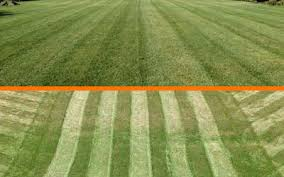 How To Build A Baseball Field In Your Backyard Lawn Striping And Lawn Patterns Scag Power Equipment