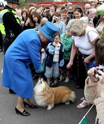 Queen S Dog Which Queen Elizabeth Are You Playbuzz