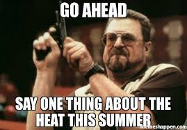 The Heat Meme - go ahead say one thing about the heat this summer meme am i the