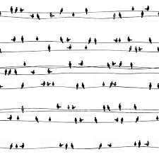 seamless pattern of birds on electrical wires stock vector art