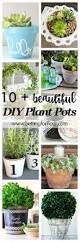 3094 best home garden containers images on pinterest gardening