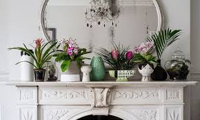 How To Arrange Indoor Plants by How To Make The Most Of House Plants Life And Style The Guardian