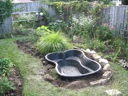 Building A Fish Pond In Your Backyard by Advice For Starting A New Garden Pond Empress Of Dirt