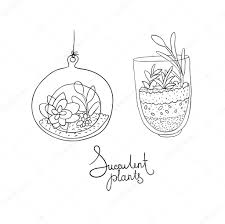 resume modernos terrarios suculentas terrarios de vidrio vector con conjunto de plantas suculentas