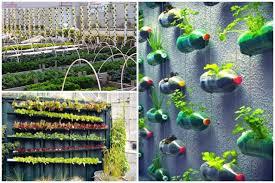 bold inspiration vertical garden design ideas stand alone wall