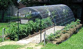 how to build a trellis archway 21 cheap u0026 easy diy greenhouse designs you can build yourself