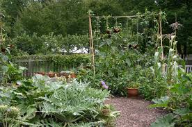 garden fantastic image of small vegetable garden decoration