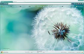 chrome themes cute macro dandelion google chrome theme by vrkm2003 on deviantart