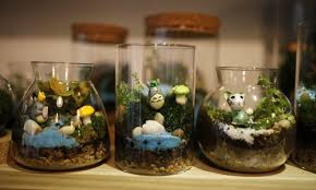 terrarium decoration miniature home decorating ideas
