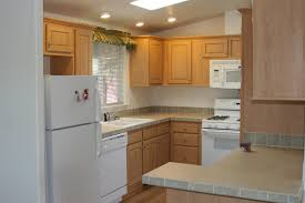 Single Kitchen Cabinet Furniture Marvelous Reface Kitchen Cabinets Light Brown Wooden