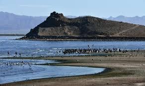 why we need the salton sea desert report