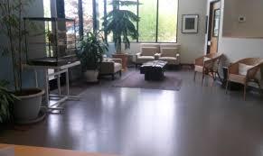 woodburn pet hospital veterinarian in woodburn or usa home