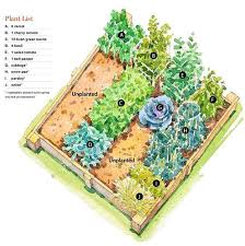 layout garden plan raised bed vegetable garden layout cool to warm raised bed vegetable