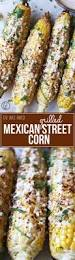 Tasty Dinner Party Recipes - best 25 mexican party foods ideas on pinterest mexican finger