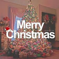 merry quote with tree pictures photos and