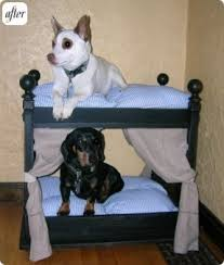 Doggie Bunk Beds Bunk Bed With Table Underneath Thing