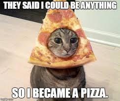 Cat Meme Maker - they said i could be anything so i became a pizza imgflip