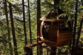 cool tree house 17 of the most amazing treehouses from around the bored panda