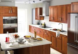 Facelift Kitchen Cabinets Modern Small Maple And Glass Kitchens Luxurious Home Design