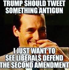 Anti Democrat Memes - should trump tweet out an anti gun position meme explains why