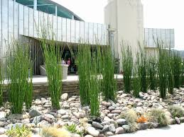 picture 3 of 50 landscaping using rocks luxury rocks in