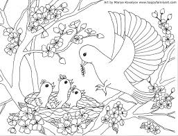 bird coloring pages to print 913 best birds coloring images on pinterest coloring books