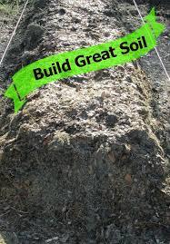 best 25 garden soil ideas on pinterest vegetable garden soil