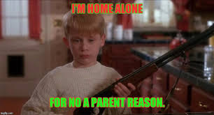 Funny Home Alone Memes - tis the season for bad puns weather we like it or not imgflip