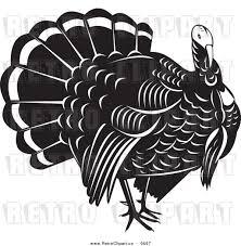black and white thanksgiving clipart turkey bird free clipart 19