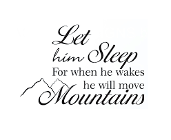 baby boy sayings wall decal sticker quote vinyl let him sleep baby boy will move