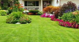 exterior attractive easy front yard landscaping ideas for
