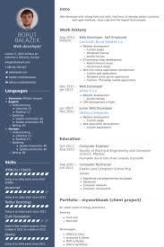 developer resume template developer resume template formal imagine exle helendearest