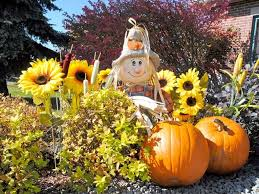 cute scarecrow wallpaper pumpkins tag wallpapers pumpkin fever carved shine scary jack