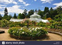 winter garden glasshouse from rose gardens dunedin botanical