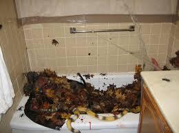 bathroom ideas for decorating ideas for decorating a bathroom avivancos