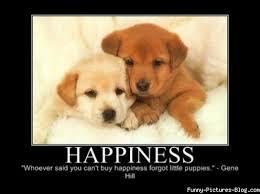 Happiness Meme - happiness
