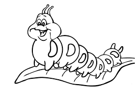 coloring pages caterpillar coloring