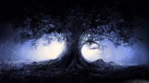 forest tree moon light wallpaper 1920x1080 504830 wallpaperup