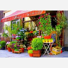 flowers store near me 103 best the flower shop images on florists floral