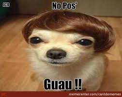 Pos Meme - no pos wow by cantdomemes meme center