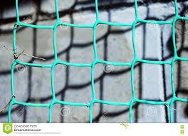 green plastic netting for climbing plants stock photo image