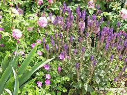 intensive gardening layout flexible design plan for a simple formal herb garden