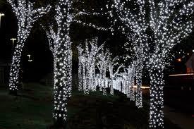 unique christmas lights for sale interior cheap christmas lights christmas trees and lights white