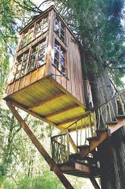 captivating tree house design architecture with three level