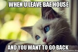 Back Problems Meme - when u leave bae house and you want to go back first world cat