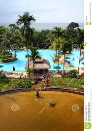 tropical island resort hotel pool u0026 landscaping stock photo