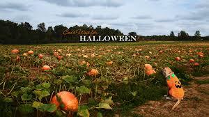 1920x1080 halloween background halloween wallpapers halloween desktop backgrounds on kate net