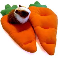 carrot cushion for guinea pigs